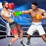 跆拳道格斗 V1.6.2 安卓版