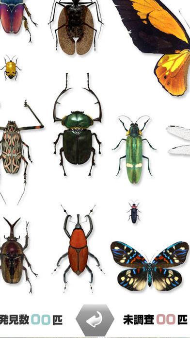 世界的昆虫采取