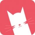猫咪视频官方版